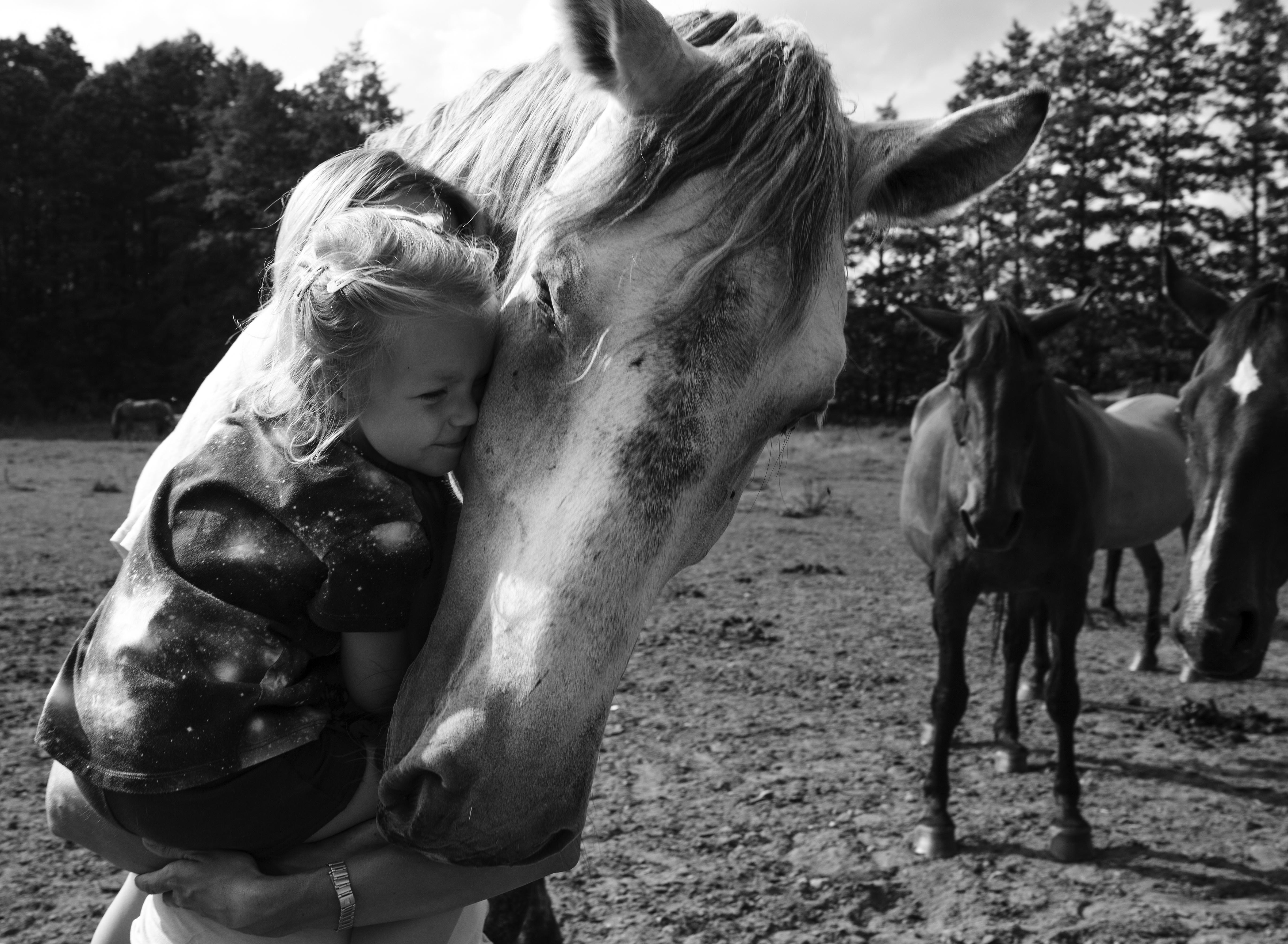 siła kobiet / Magda ratuje konie / MINT MAG